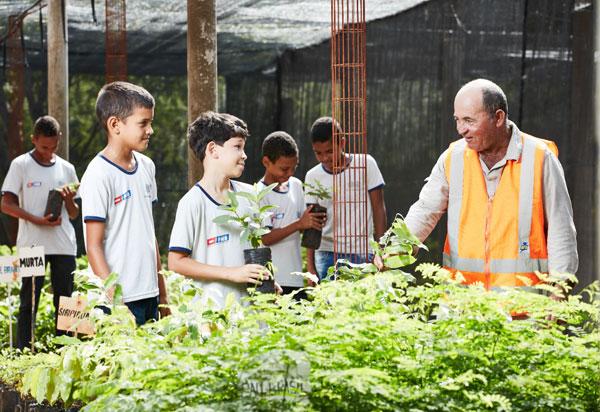 Dia da Árvore: RHI Magnesita mantém importantes ações de preservação e ampliação de áreas arborizadas