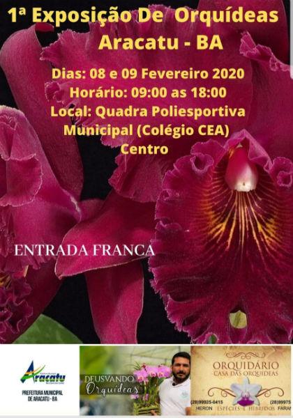 Aracatu: acontece nos dias 08 e 09 de fevereiro a 1ª Exposição de Orquídeas
