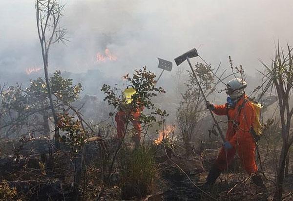 Bahia: 706 focos de queimadas foram registrados em 48 horas; Aracatu é a cidade mais atingida