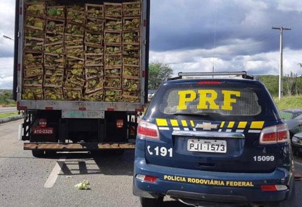 Sudoeste: Mais um grande carregamento de cigarros contrabandeados avaliado em mais de 1 milhão de reais é apreendido pela PRF