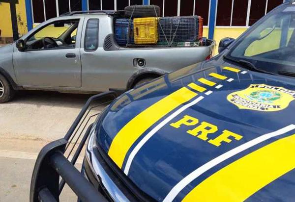 Em apenas 03 dias de fiscalização, mais 10 veículos são recuperados nas rodovias federais da Bahia