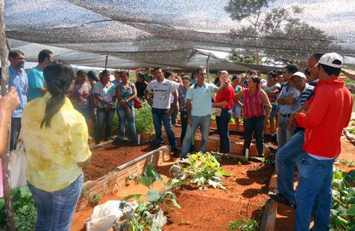 Agricultores e agricultoras da região participam de intercâmbios