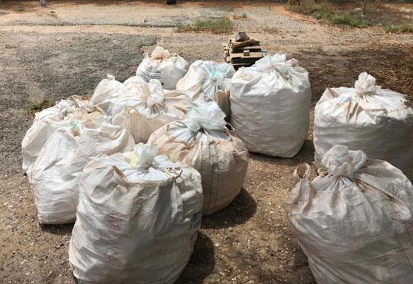 Brumado: Campanha de recolhimento captou 3.850 embalagens vazias de agrotóxicos