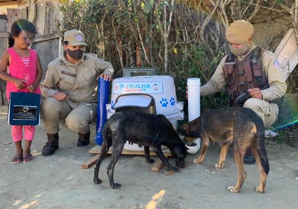 Animais de rua ganham comedores e abrigo em Vitória da Conquista