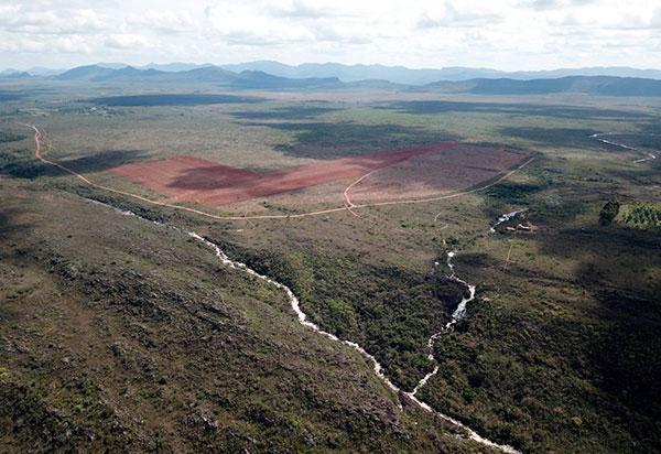 Piatã: MP recomenda cancelar autorização de supressão de vegetação nativa em fazenda do agronegócio