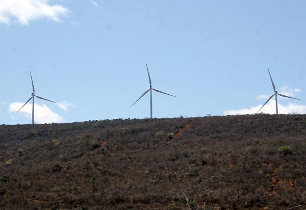 Bahia comercializa 55% de novos projetos eólicos em leilão de energia