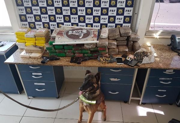 Cão da Caesg localiza 80 kg de drogas e armas em ação integrada com a PRF